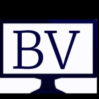 BisVue.com